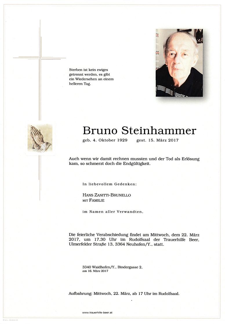 Bruno Steinhammer