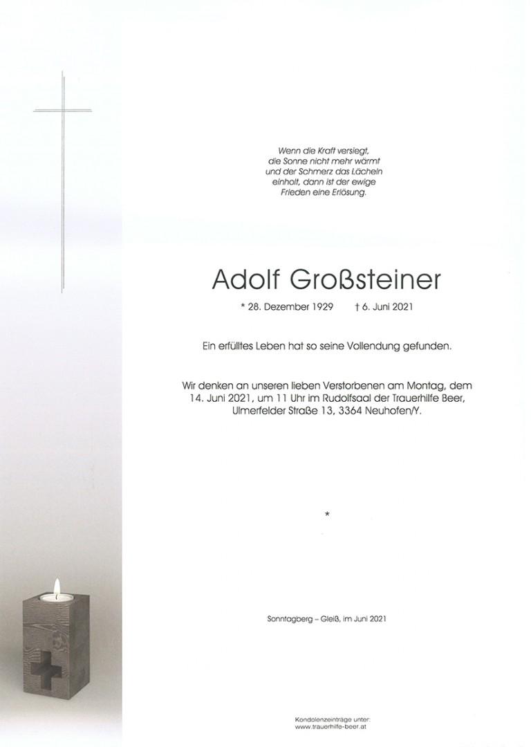 Parte Adolf Großsteiner