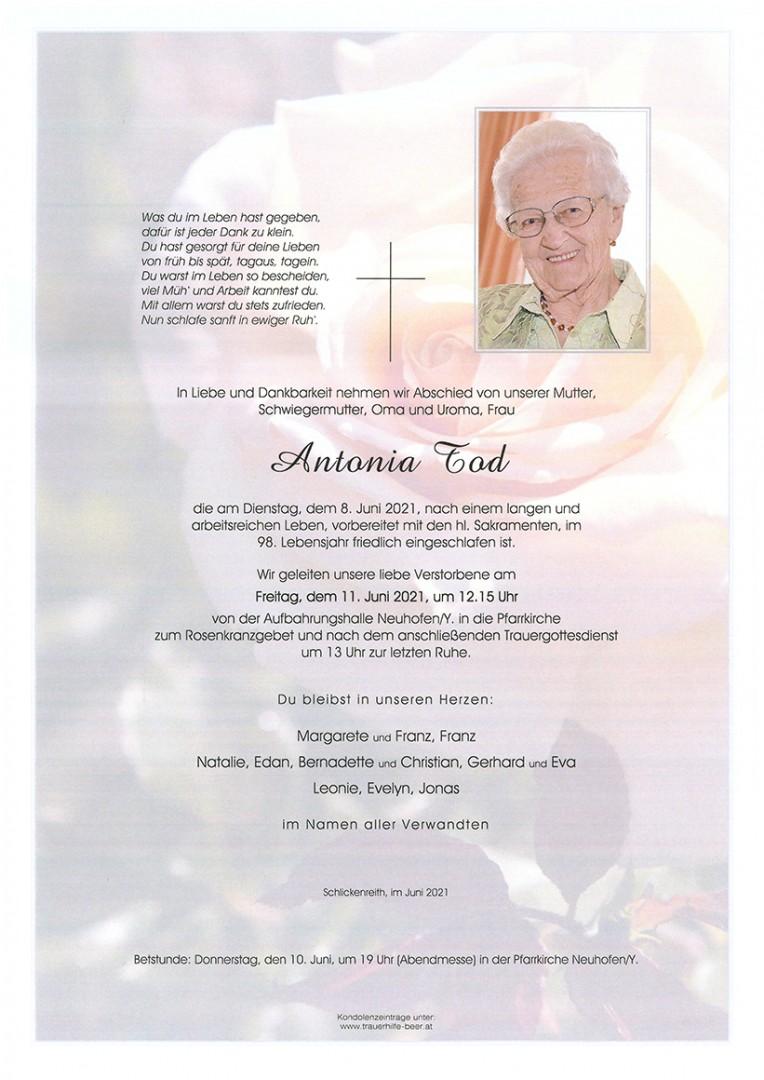 Parte Antonia Tod